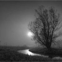 Ночная тишина :: Nikita Volkov