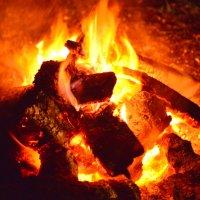 Костер. огонь, тепло, ожогов нет! :: Владимир Куликов