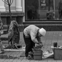 Цветочница :: Алексадр Мякшин