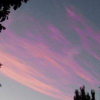 Розовые вечерние облака.... :: Любовь К.
