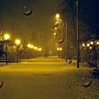 Вечерний парк в снегопад. :: Aлександр **