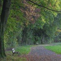 В парке :: Андрей Бойко