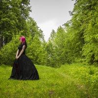 В лесу... :: Татьяна Шторм