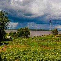 В огороде :: Валерий Симонов