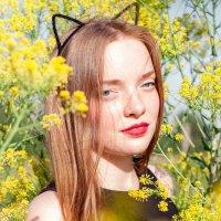 Kitty :: Анна Бакеева