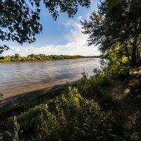 Река урал :: Dmitriy Predybailo
