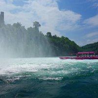 Вблизи Рейнского водопада... :: Galina Dzubina