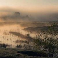 Туманный вальс. :: Александр Тулупов