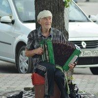 гармонист :: Андрей Кобриков