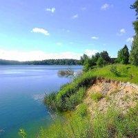 Солнечным утром на озере :: Маргарита Батырева