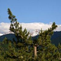 Там лазурное небо и снежные горы... :: Anna Gornostayeva
