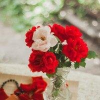 Троянди :: Ira Oleynik