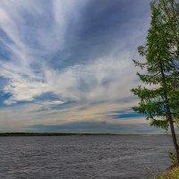 Река Пур :: Денис Сидельников
