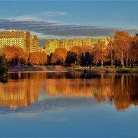 Золотой закат в Золотую осень... :: Sergey Gordoff