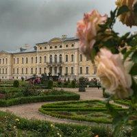 Охота на розы в Рундальском дворце :: Viktor Makarov