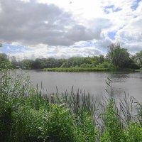 Серые тучи повисли над озером :: Маргарита Батырева