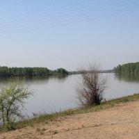 Река Бия в мае :: Олег Афанасьевич Сергеев
