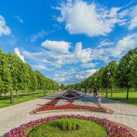 Музей-заповедник Царицыно :: Mikhail Andronikov