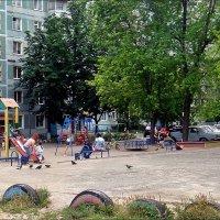 Люди и голуби на детской площадке :: Нина Корешкова