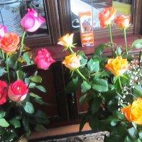 Цветы после концерта :: татьяна