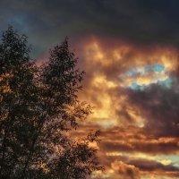Июль. Закат. Вид из окна. Холодно. :: Sergey Polovnikov