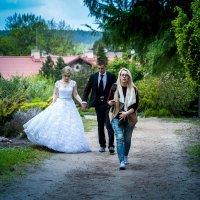 Прогулка в парке. A там одни свадьбы.IV :: Arturas Barysas