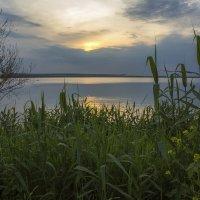 Июньский тихий вечер на Нововоронежском водохранилище 2017 :: Юрий Клишин