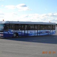 автобус к самолету :: Евгений Пикаревский