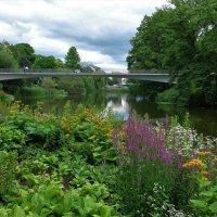 Лето в парке цветов :: Nina Yudicheva