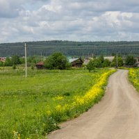 Поездка в деревню :: Евгений Даренский