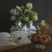 Она любила чай с жасмином, :: ALISA LISA