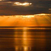 на Белом море :: Елена Медведева