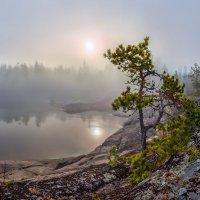 На каменном острове :: Фёдор. Лашков