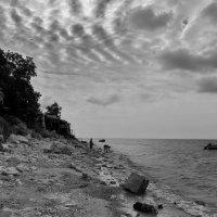 Настроение на берегу пасмурным утром :: M Marikfoto