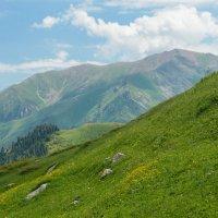 Сочные горы :: Горный турист Иван Иванов
