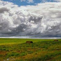 У природы нет плохой погоды... © :: Александр Никитинский