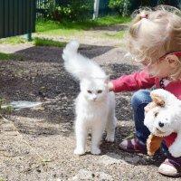 Полнейшая идиллия у трёх блондинок. :: Татьяна Помогалова