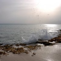Море :: Liudmila Antonova