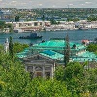 Весь покрытый зеленью... :: Игорь Кузьмин