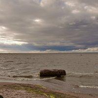 У Финского залива-2 :: Валентина Папилова