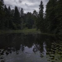 ночь на болоте :: Дмитрий Булатов