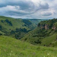 Березовское ущелье :: Николай Николенко