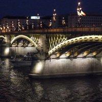 Мост Маргит на Дунае. :: Alla S.