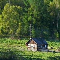 Жизнь на природе (на берегу Байкала) :: spm62 Baiakhcheva Svetlana