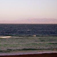 Запретный берег Саудовской Аравии :: Марина Домосилецкая