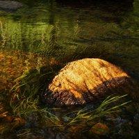 Вечерний камешек речной :: Владимир Гилясев