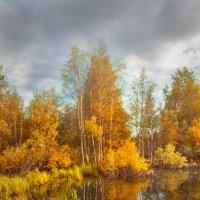 Фотошоп принес нам осень :: Денис Сидельников