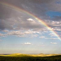 ...Эти летние дожди, эти радуги и тучи :: Александр Грищенко