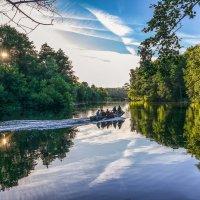 Летний вечер в лесу на реке Цне................ :: Александр Селезнев
