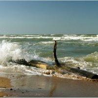 Азовские волны. :: сергей лебедев